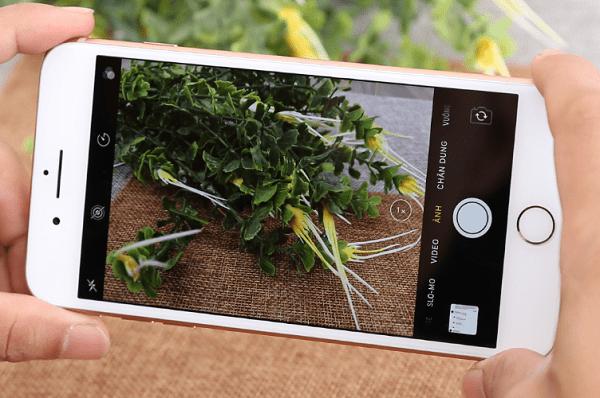 camera iphone 8 plus bi mo